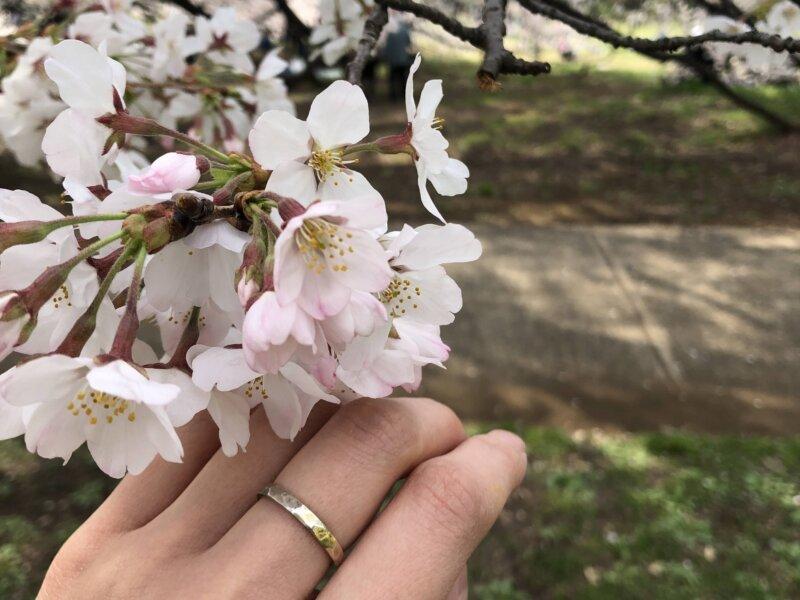 指輪をつけておでかけ・世田谷美術館のアアルト展